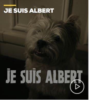 JE SUIS ALBERT