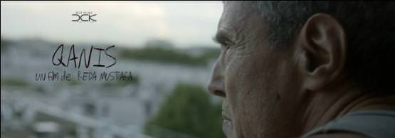 Qanis de Reda Mustafa, DCK Films